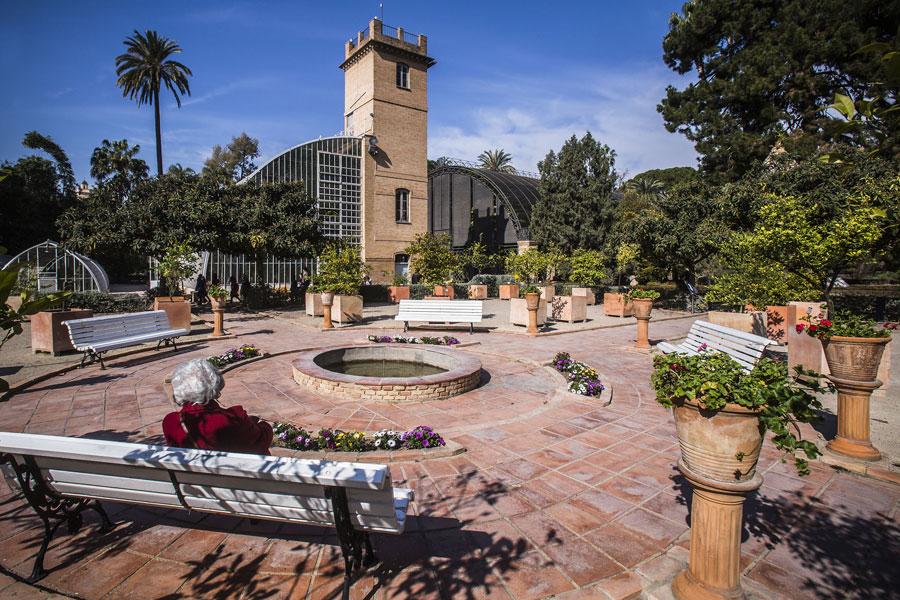 La plaça de Carlos Pau, al centre del Jardí. Perfecta per a gaudir del sol i les vistes a l'Hivernacle Tropical, l'edifici antic i l'Umbracle.