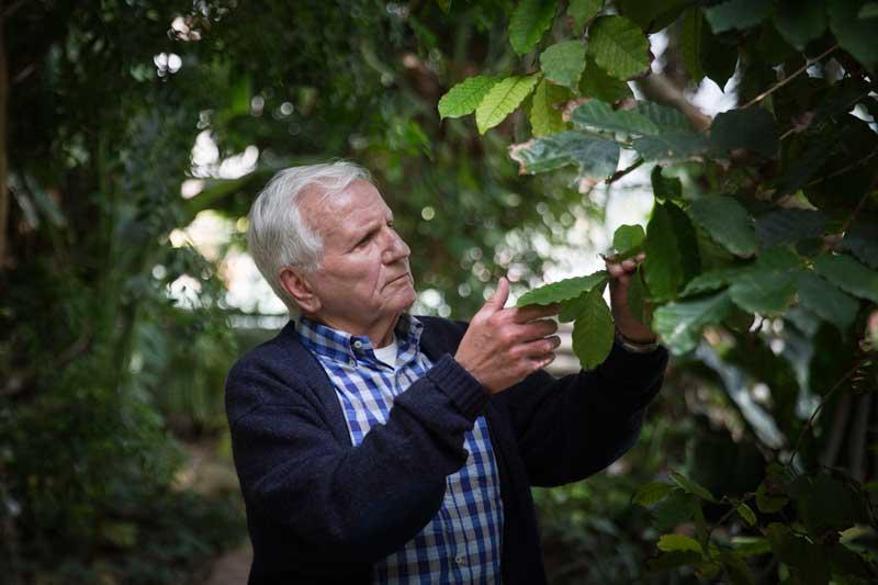 Manuel Costa és catedràtic de Botànica i professor honorari a la Universitat de València. Foto: Miguel Lorenzo.