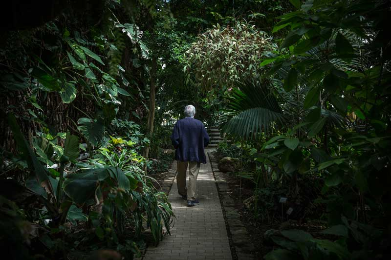 Autor de nombroses publicacions i treballs científics sobre flora i vegetació, Manuel Costa ha tingut un paper fonamental en la divulgació i el coneixement de la botànica valenciana. Foto: Miguel Lorenzo.